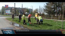 На озеленення Мукачева витратять 4,5 млн. грн. платників податків